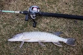 наилучшие погодные условия для рыбалки